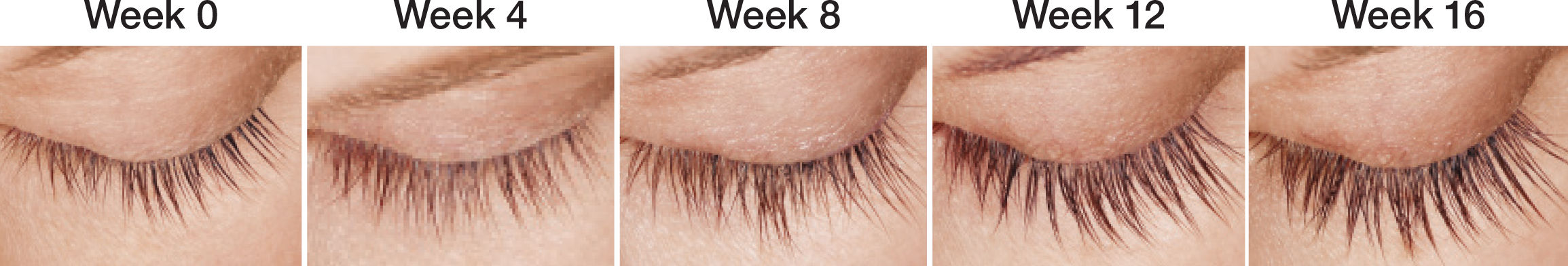 Progression of lashes improving